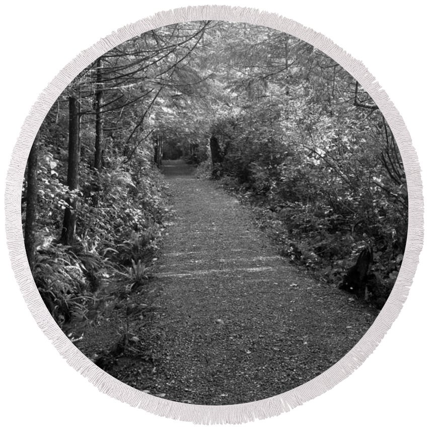 Black And White Round Beach Towel featuring the photograph Through The Forest Canopy Black And White by Adam Jewell