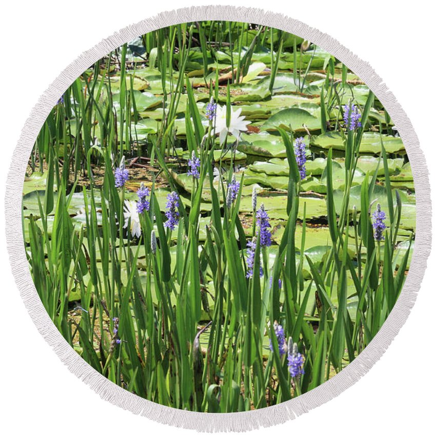 Lily Pond Round Beach Towel featuring the photograph Through The Lily Pond by Carol Groenen