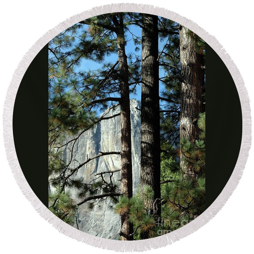 Trees Round Beach Towel featuring the photograph Through The Trees by Kathleen Struckle
