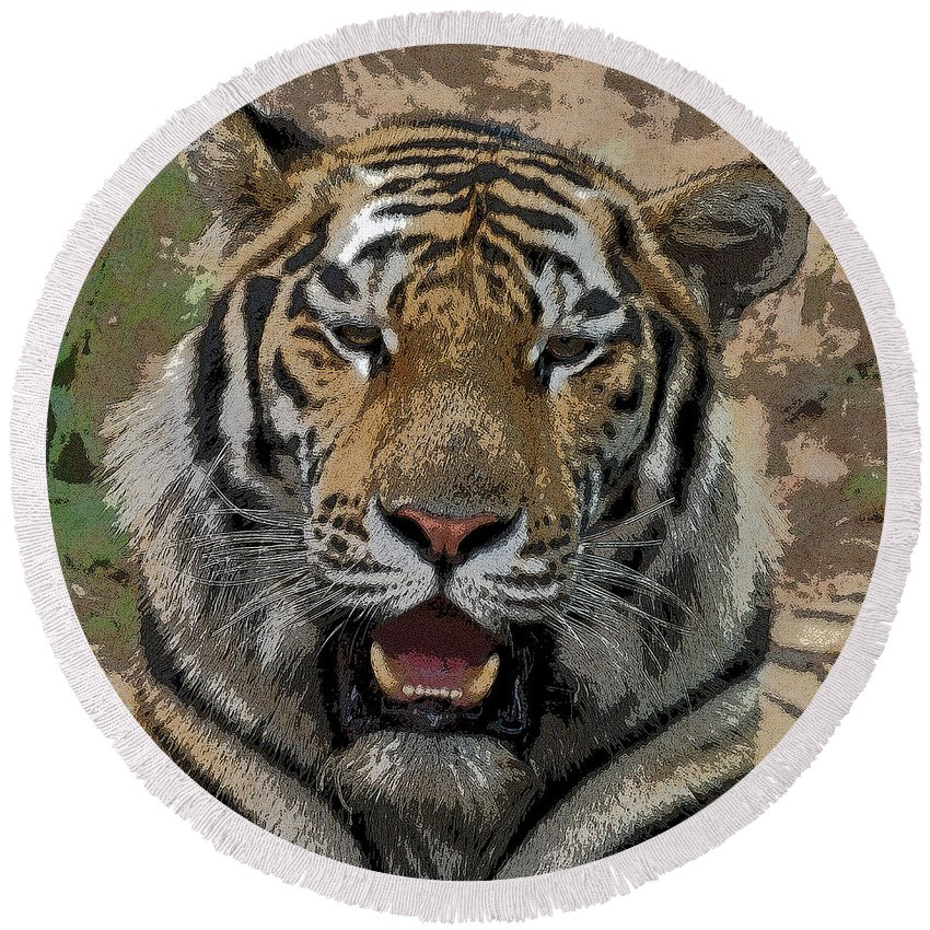 Tiger Round Beach Towel featuring the photograph Tiger Abstract by Ernie Echols