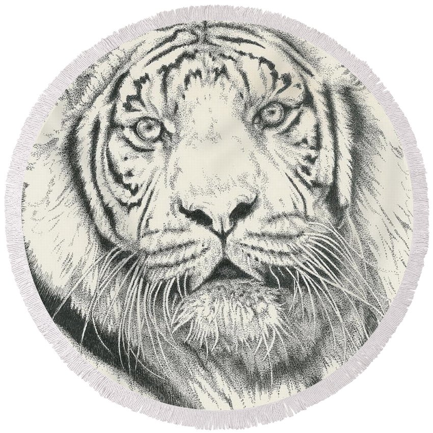 Tiger Round Beach Towel featuring the drawing Tigerlily by Barbara Keith