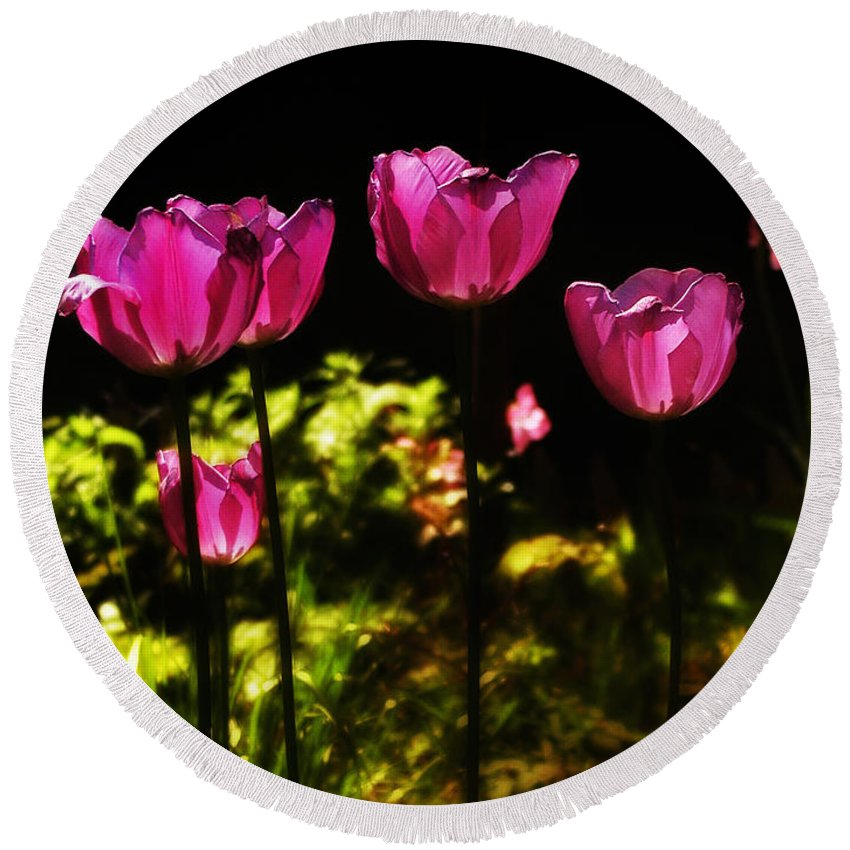 Tulips Round Beach Towel featuring the photograph Tiptoe Through The Tulips by Bill Cannon