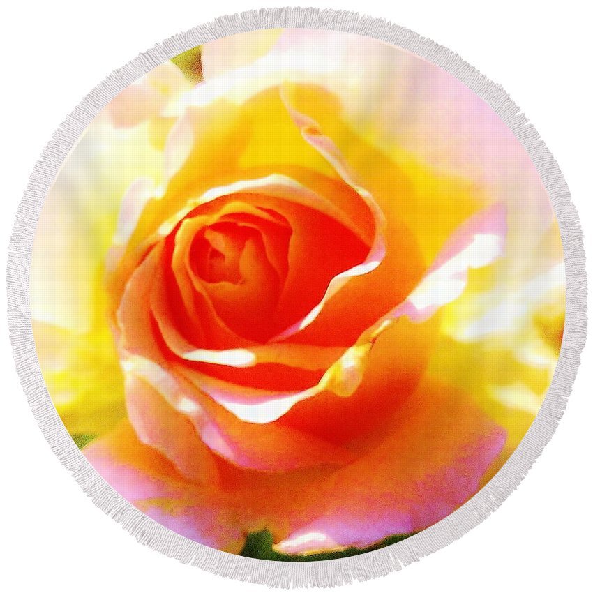 Round Beach Towel featuring the photograph Tjs Rose A Glow by Daniel Thompson