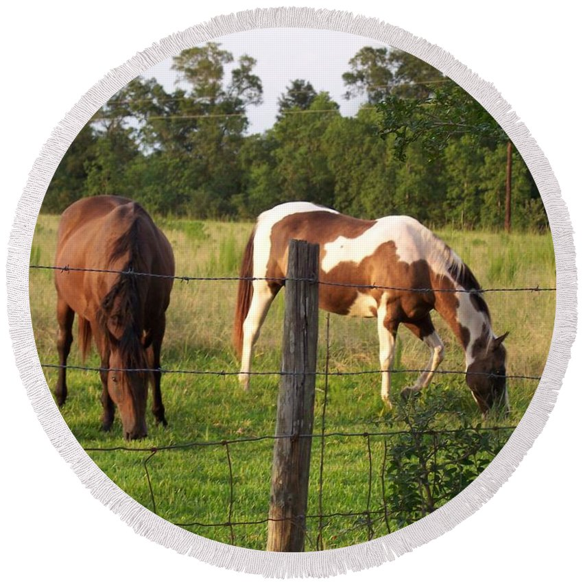 Horse Round Beach Towel featuring the photograph Tobiano And Bay Horses by Brandy Woods
