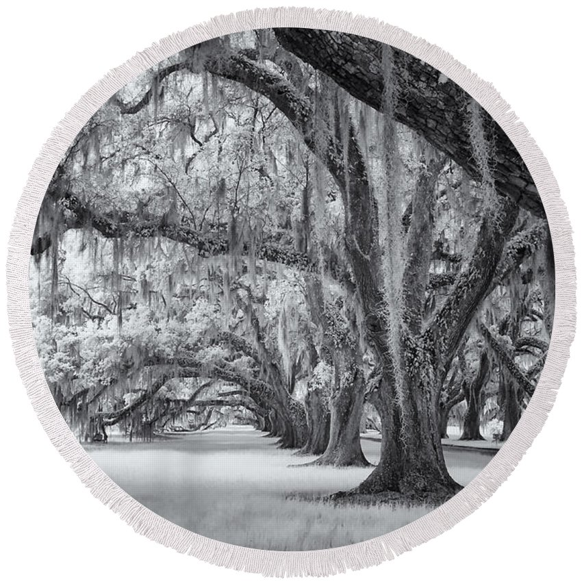 Cindy Archbell Round Beach Towel featuring the photograph Tomotley Plantation Oaks by Cindy Archbell