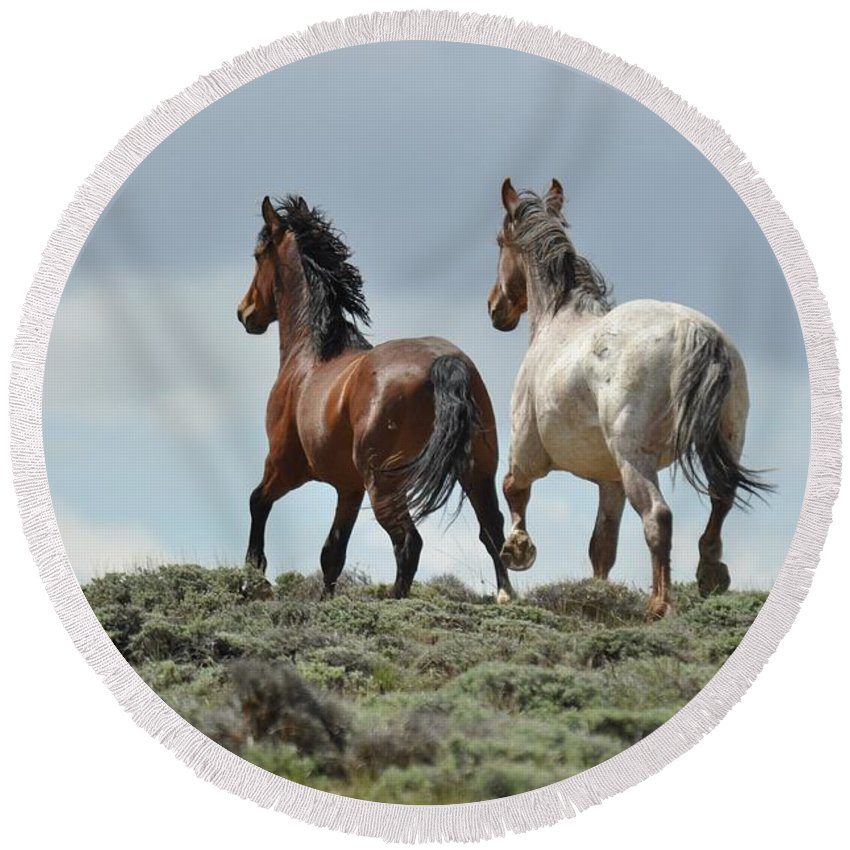 Wild Horses Round Beach Towel featuring the photograph Too Beautiful by Frank Madia