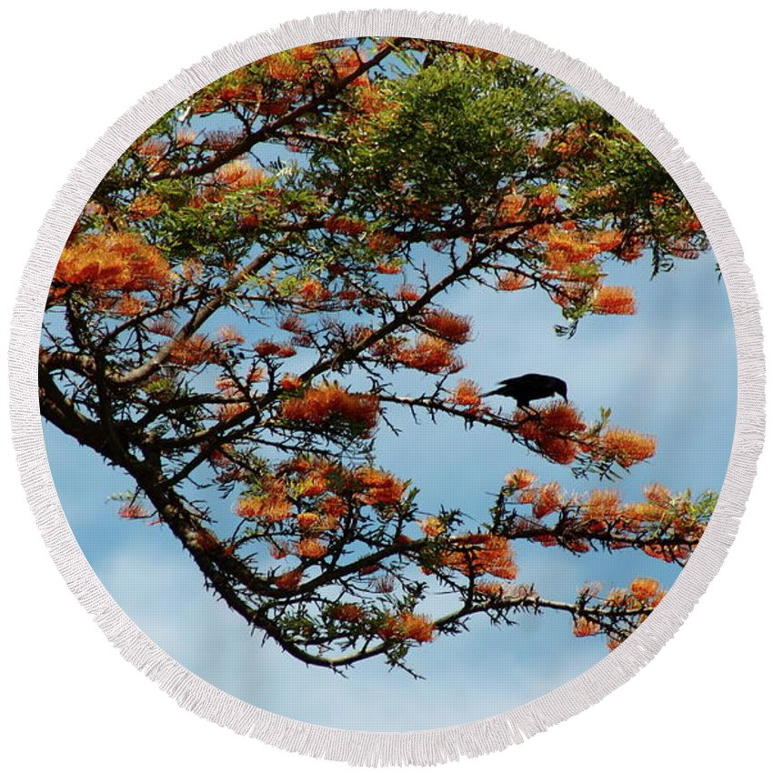Tree Round Beach Towel featuring the photograph Touch Of Orange by Elayne Hand