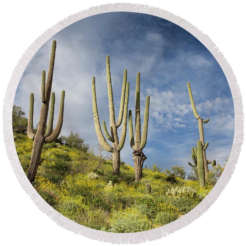 Arizona Round Beach Towel featuring the photograph Touch The Sky by Cathy Franklin