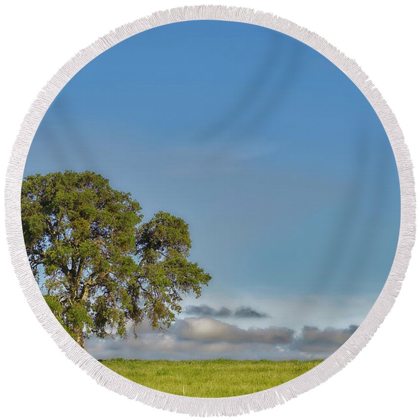 Blue Round Beach Towel featuring the photograph Tree Above The Clouds by Jens Peermann