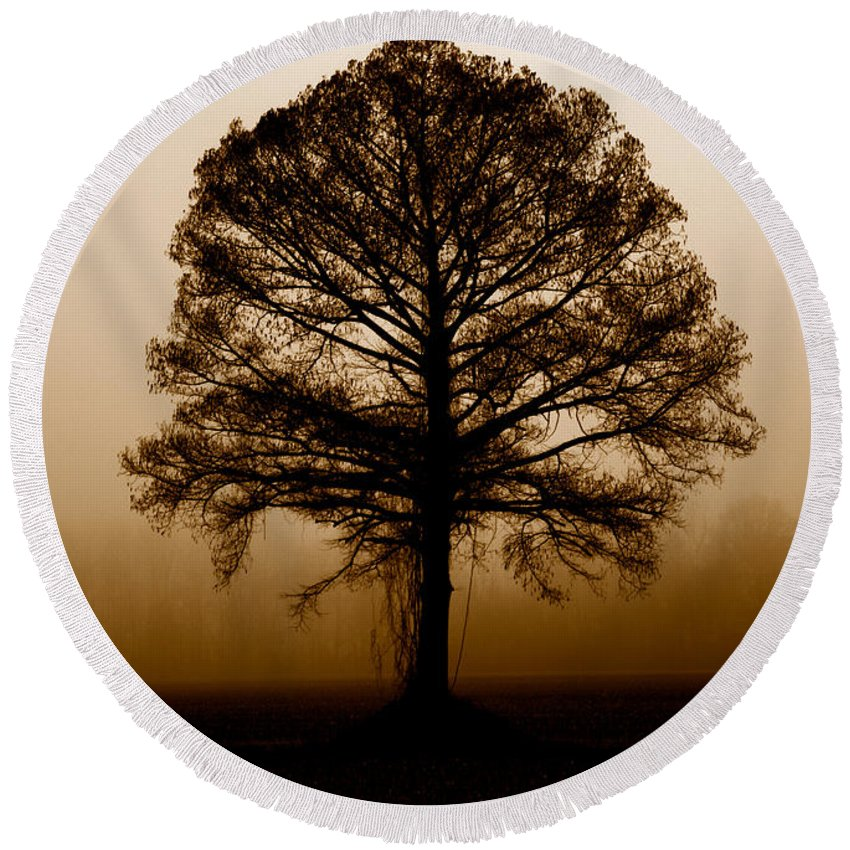 Trees Round Beach Towel featuring the photograph Tree by Amanda Barcon