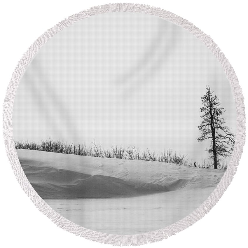 Yellowstone Round Beach Towel featuring the photograph Tree And Snow by Gary Lengyel