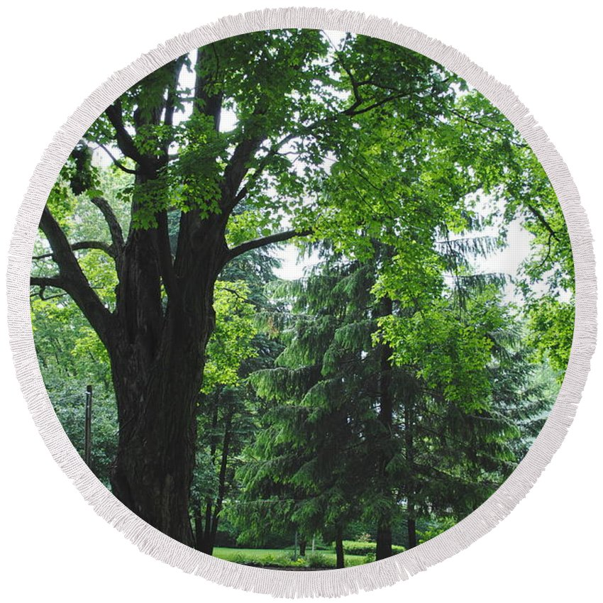 Tree Round Beach Towel featuring the photograph Tree Bench by Jost Houk