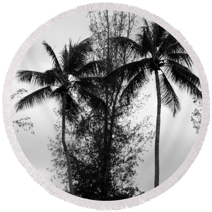 Palms Round Beach Towel featuring the photograph Tree Between The Trees by Deborah Crew-Johnson