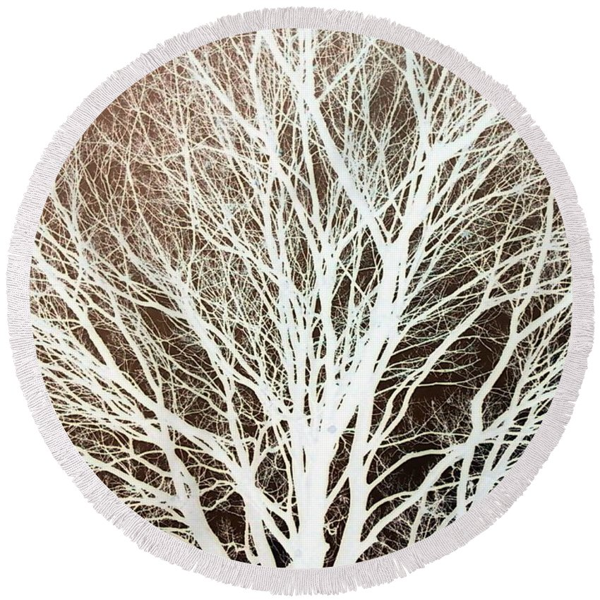 Tree Brown Negative Round Beach Towel featuring the photograph Tree by Cindy New