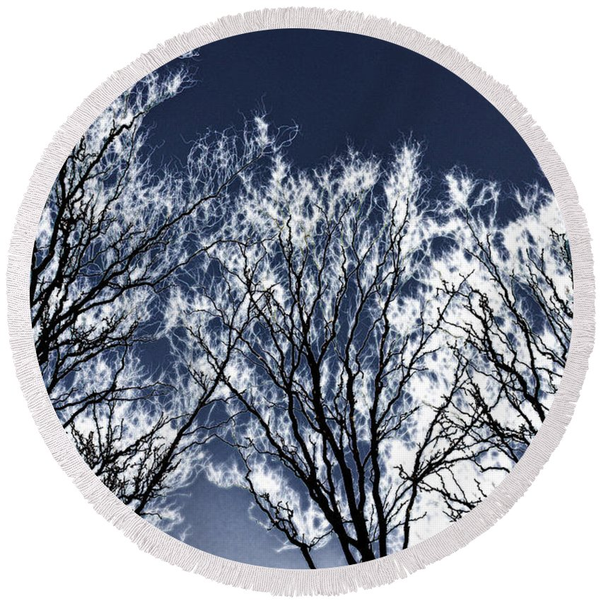 Scenic Round Beach Towel featuring the photograph Tree Fantasy 2 by Lee Santa