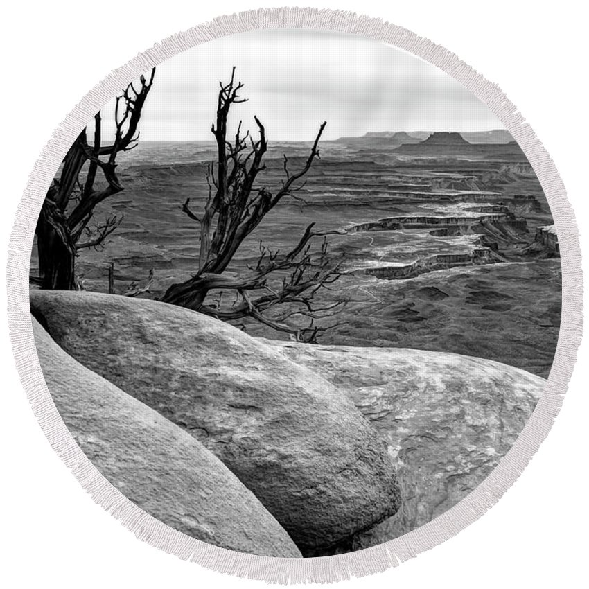 Canyonlands National Park Round Beach Towel featuring the photograph Tree In A Desert by Bogdan Lewulis