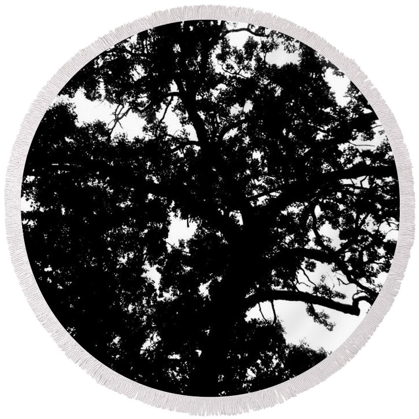 Landscape Round Beach Towel featuring the photograph Tree In Black And White by April Patterson