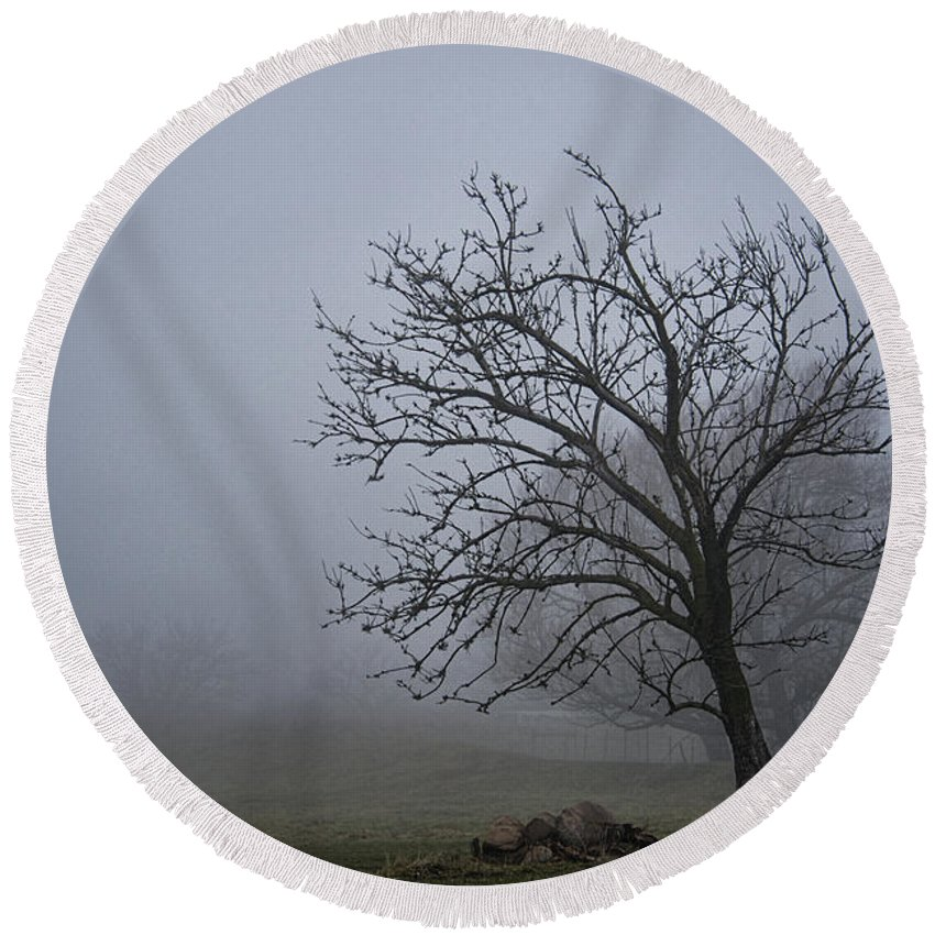 Fog Round Beach Towel featuring the photograph Tree In The Fog by David Arment