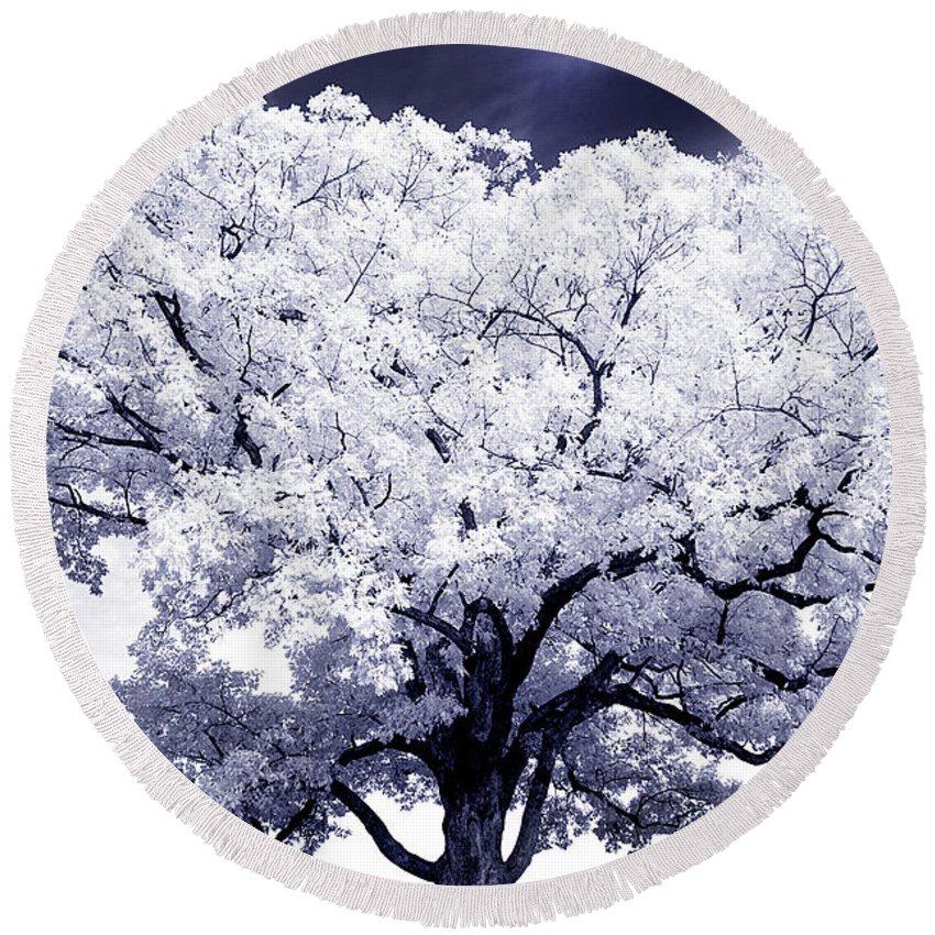 Tree Round Beach Towel featuring the photograph Tree by Paul W Faust - Impressions of Light