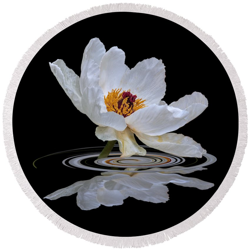 White Tree Peony Round Beach Towel featuring the photograph Tree Peony Reflections by Gill Billington