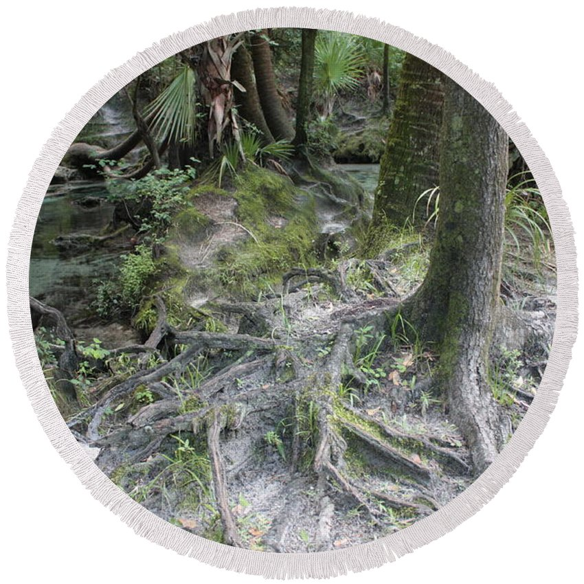 Lithia Springs Round Beach Towel featuring the photograph Tree Roots And Lithia Springs by Carol Groenen