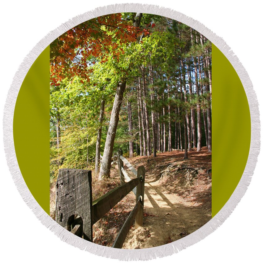 Tree Round Beach Towel featuring the photograph Tree Trail by Margie Wildblood