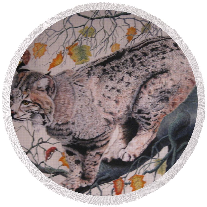 Bobcat Round Beach Towel featuring the pastel Treed by John Huntsman