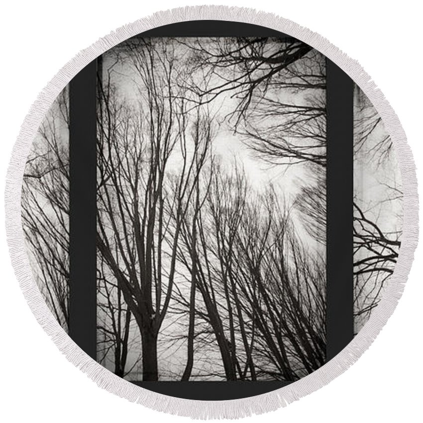Black&white Round Beach Towel featuring the photograph Treeology by Dorit Fuhg
