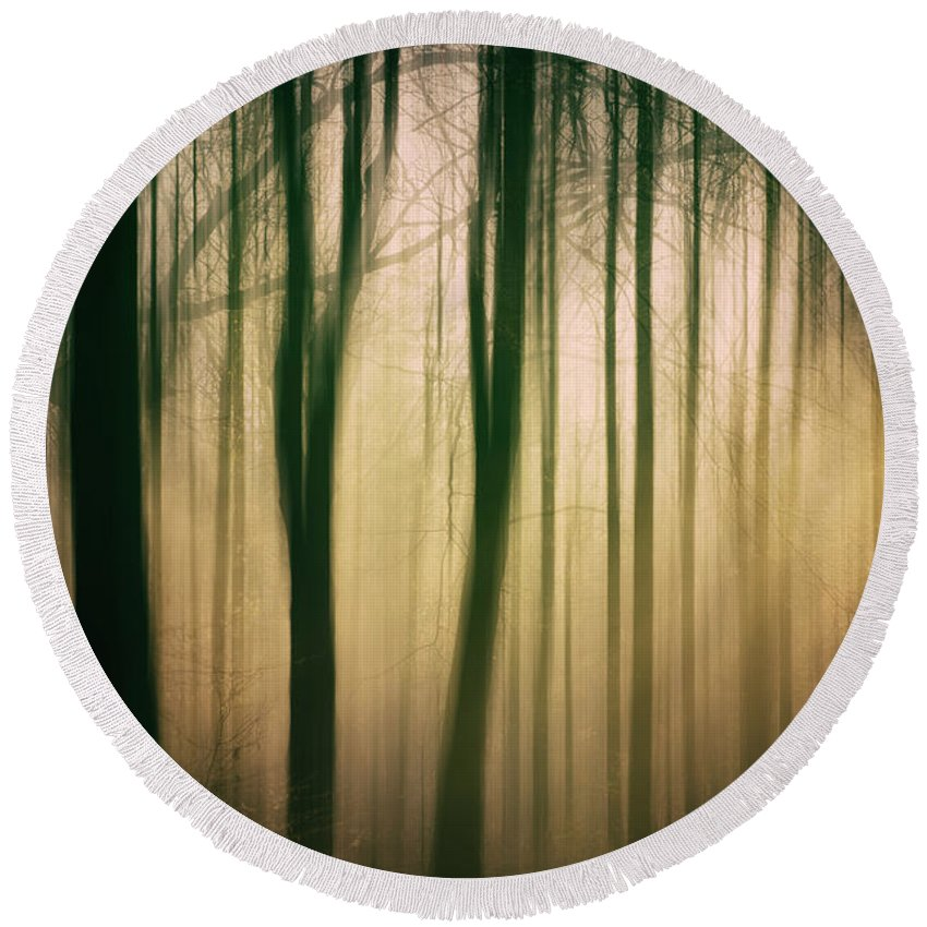 Nature Round Beach Towel featuring the photograph Trees At Dawn by David Lichtneker