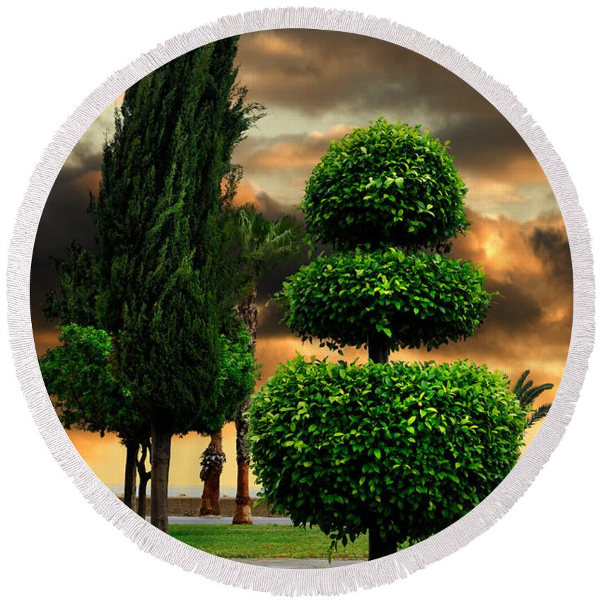 Trees Round Beach Towel featuring the photograph Trees In A Park Of Limassol City Sea Front In Cyprus by Maxim Images Prints