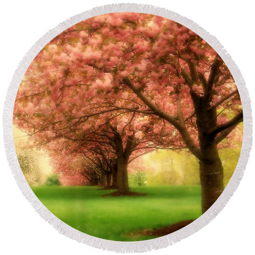 Cherry Blossom Trees Round Beach Towel featuring the photograph Trees In A Row by Angie Tirado