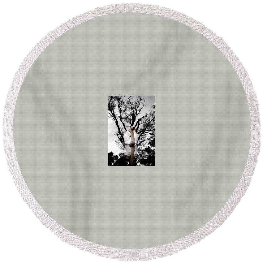 Water Round Beach Towel featuring the photograph Trees In Japan 6 by George Cabig