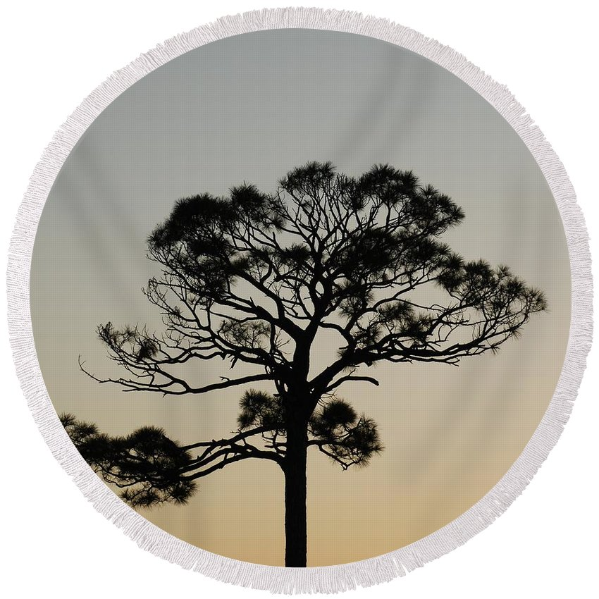 Tree Round Beach Towel featuring the photograph Trees In Sunset by Rob Hans