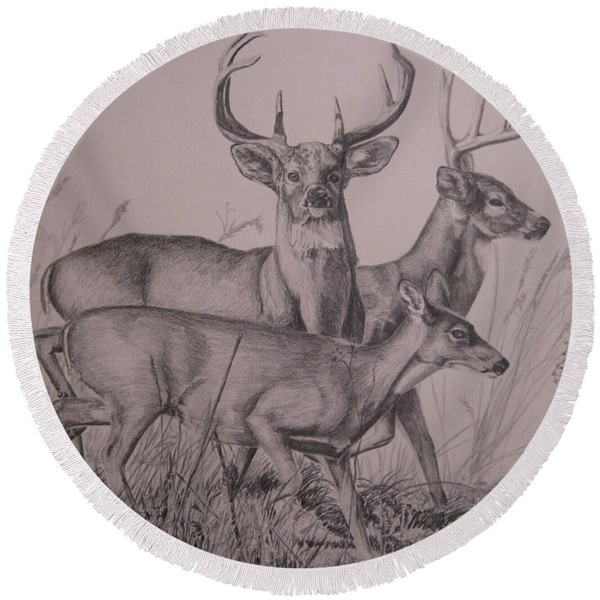 Wildlife Round Beach Towel featuring the drawing Trio by John Huntsman