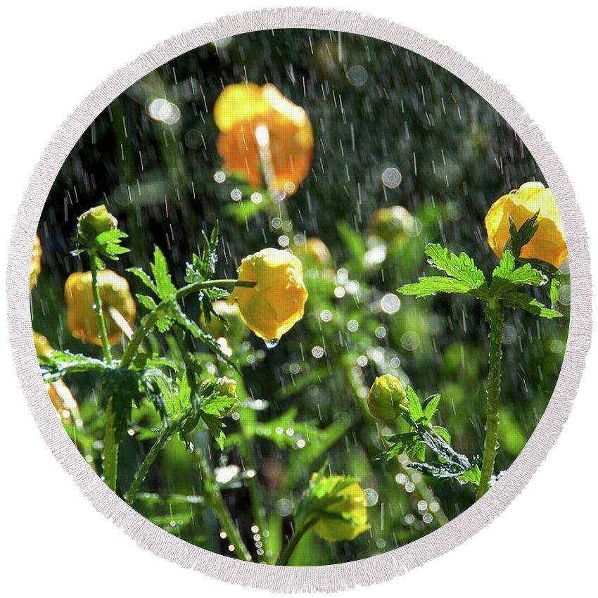 Trollius Europaeus Spring Flowers In The Rain By Tamara Sushko Round Beach Towel featuring the photograph Trollius Europaeus Spring Flowers In The Rain by Tamara Sushko