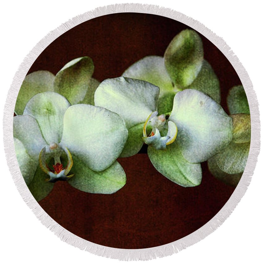 Orchids Round Beach Towel featuring the photograph Tropical Dream by Susanne Van Hulst