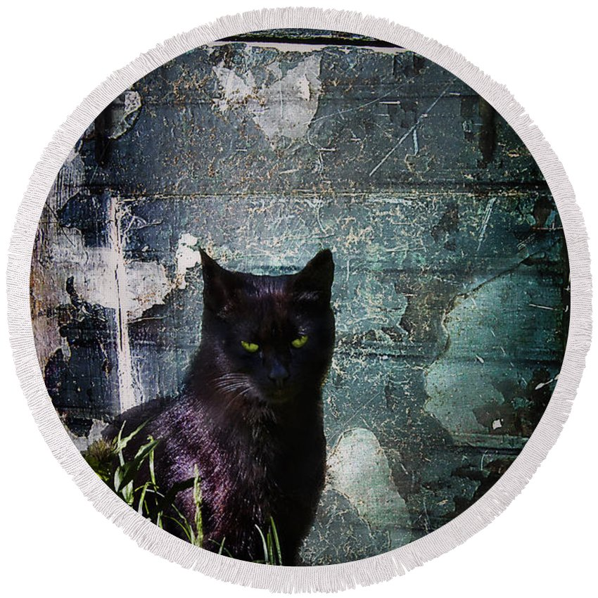 Dark Round Beach Towel featuring the photograph Truth Or Stare... by Evelina Kremsdorf