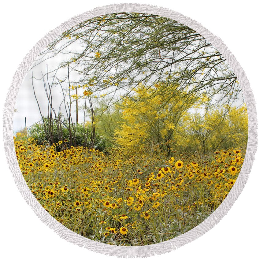 Trees Round Beach Towel featuring the photograph Tucson Wildflowers by Kume Bryant