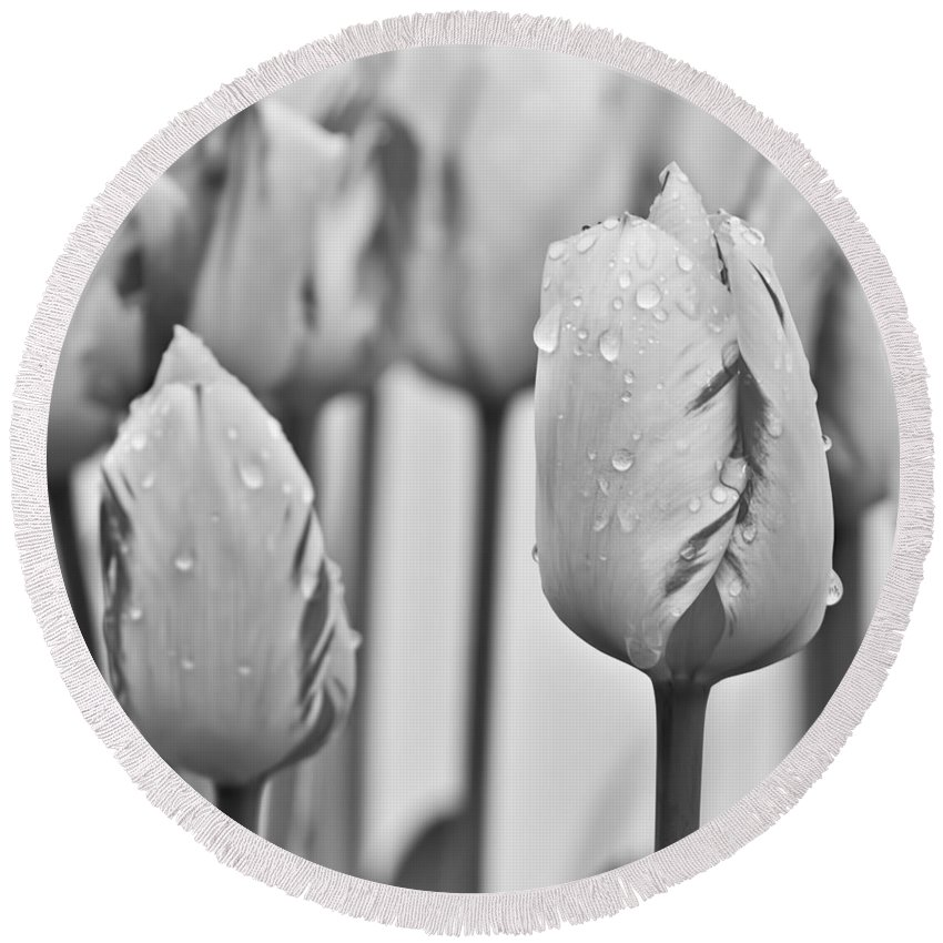 Flowers Round Beach Towel featuring the photograph Tulip 32 by Ingrid Smith-Johnsen