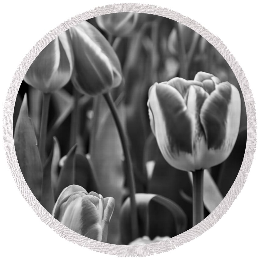 Flowers Round Beach Towel featuring the photograph Tulip 41 by Ingrid Smith-Johnsen