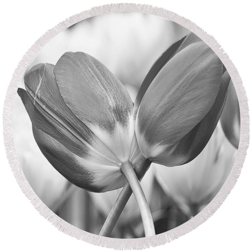 Abundance Round Beach Towel featuring the photograph Tulip 47 by Ingrid Smith-Johnsen