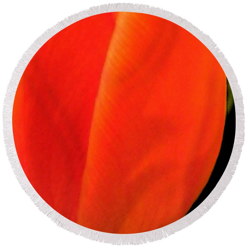 Tulips Round Beach Towel featuring the photograph Tulip by Amanda Barcon