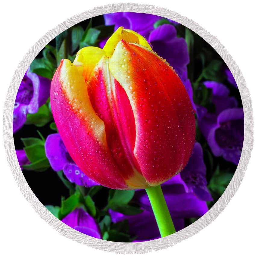 Tulip Round Beach Towel featuring the photograph Tulip And Foxglove by Garry Gay