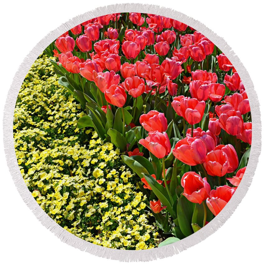 Spring Round Beach Towel featuring the photograph Tulip Line by Ally White