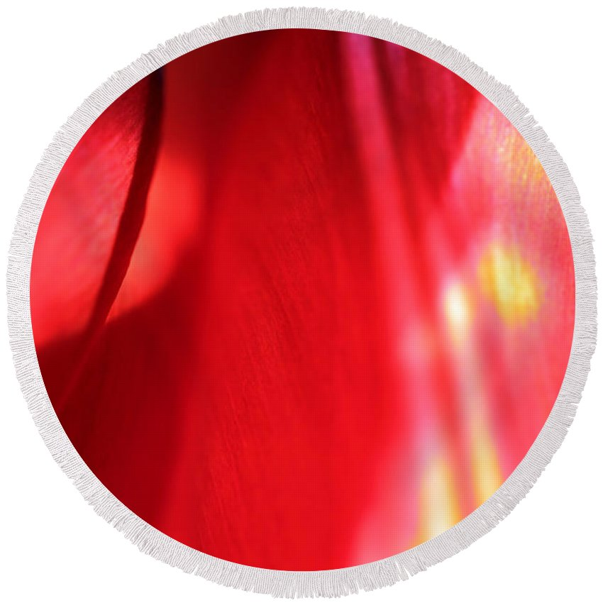 Tulips Round Beach Towel featuring the photograph Tulip Mind by Amanda Barcon
