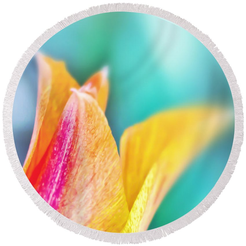 Tulip Round Beach Towel featuring the photograph Tulip Tips by Kerri Farley