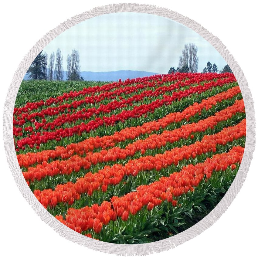 Agriculture Round Beach Towel featuring the photograph Tulip Town 18 by Will Borden