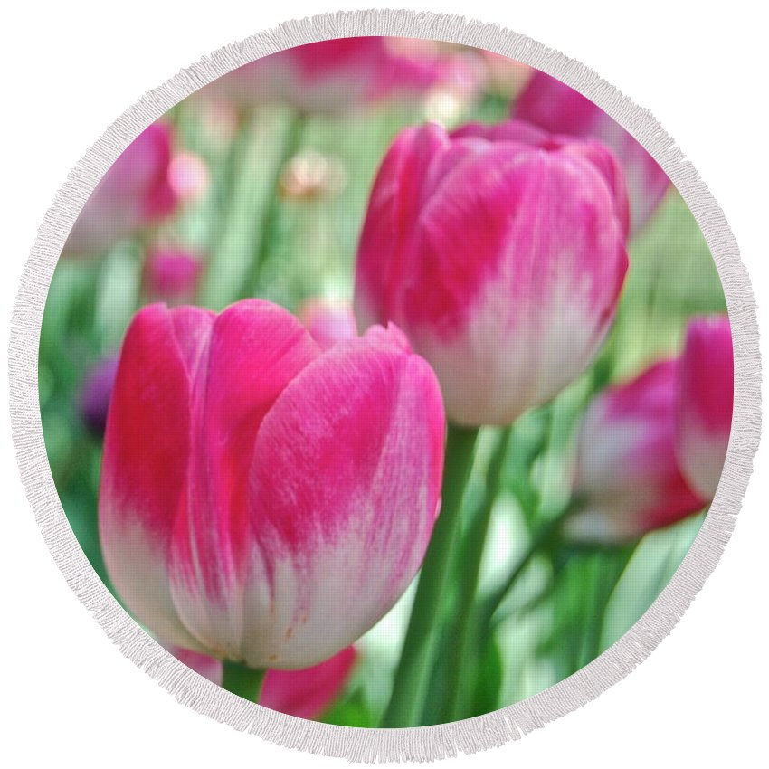 Flower Round Beach Towel featuring the photograph Tulips by Michael Peychich