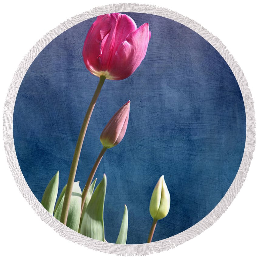 Flower Round Beach Towel featuring the photograph Tulips by Terri Waters