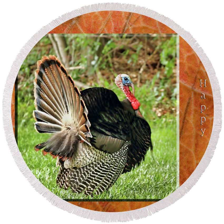 Recent Round Beach Towel featuring the photograph Turkey Strut by Geraldine Scull